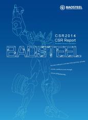 CSR Report 2014